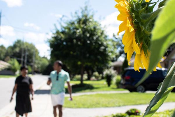 A sunflower takes focus as Marie and Daniel walk.