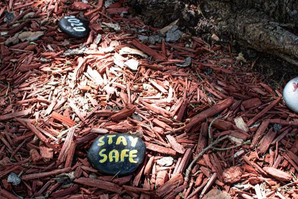Painted stones in the neighbourhood marked with '2020' and 'Stay Safe'.