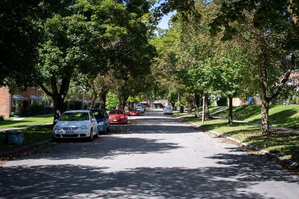 A view of a tree-lined residential street in the neighbourhood.