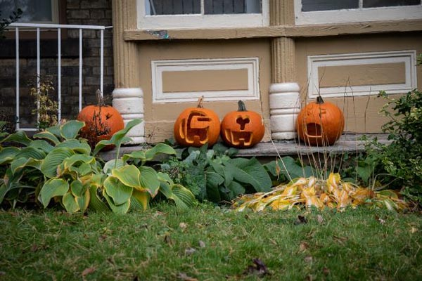 Several carved pumpkins decorate the porch of a home in the neighbourhood